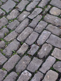 Cobblestone alley Stock Image