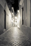 Cobblestone alley. Alley in san juan puerto rico with cobblestone street at night Royalty Free Stock Photos