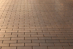 Cobblestone background. Cobblestone road in light of the setting sun Royalty Free Stock Images