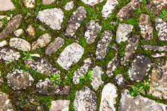 Cobblestone background Royalty Free Stock Image