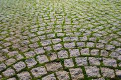 Cobblestone com os tijolos da grama que mostram a perspectiva. Imagens de Stock