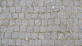 Cobblestone flooring texture. Pattern outdoor Royalty Free Stock Image