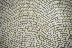 Cobblestone with grass Stock Images