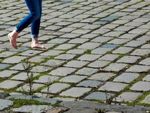Cobblestone, Grass, Road Surface, Plant royalty free stock images