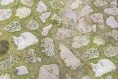 Cobblestone with grass texture Royalty Free Stock Photography