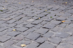 Cobblestone and leaves Royalty Free Stock Images