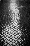 Cobblestone molhado Imagem de Stock Royalty Free