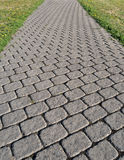 Cobblestone Path Royalty Free Stock Photo