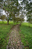 Cobblestone path. Cobble stone pathway leading to the pre-columbian archaeology site of El Tablon in Tierradentro Colombia Royalty Free Stock Image