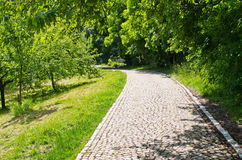 Cobblestone path Stock Photos