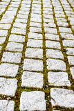 Cobblestone path Royalty Free Stock Images