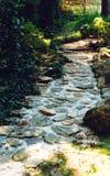 Cobblestone Pathway Stock Images