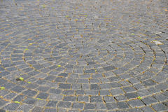 Cobblestone pavement. Stock Photos
