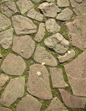 Cobblestone  pavement background Royalty Free Stock Photos