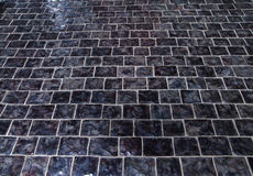 Cobblestone pavement on square. Background texture Stock Photos