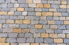 Cobblestone pavement on street in Prague Stock Images