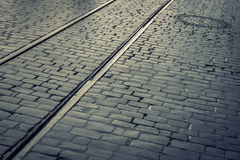 Cobblestone pavement with tram rails. Old cobblestone pavement with tram rails removed on a rainy morning.Toned photo Royalty Free Stock Photo