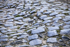 Cobblestone Road- Detail Royalty Free Stock Photo