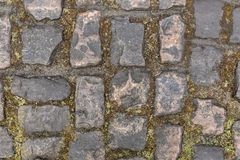 Cobblestone Road- Detail. Detail of the famous cobbelstone road located in the Forest of Arenberg in North of France. On such roads every year is organized the Stock Photo