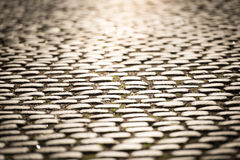 Cobblestone road in Stockholm, Sweden Royalty Free Stock Photo