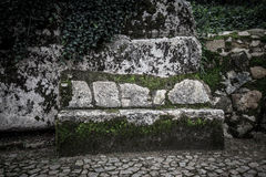Cobblestone road to the palace foam among the rocks and trees an Royalty Free Stock Image