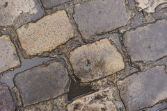 Cobblestone Road with Water Puddles. Water puddles from rain on wet cobblestone road Royalty Free Stock Image