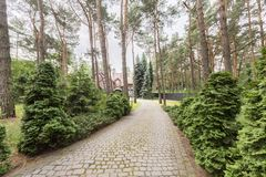 Cobbelstone road in the woods leading to an old house. Real photo. Cobblestone road in the woods leading to an old house. Real photo concept royalty free stock images