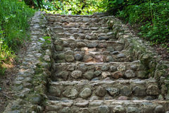 Cobblestone stairs in the woods Stock Photos