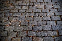 Cobblestone street as backgroung in Uruguay Royalty Free Stock Images