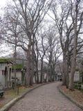 A cobblestone street in Père Lachaise Cemetery, Paris royalty free stock photos