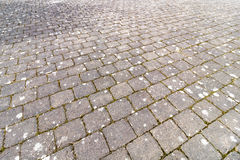 Cobblestone Walk Way. An old brick path walk way Stock Images