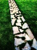 Cobblestone Walking Path in Green Grass Stock Photos