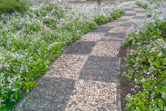 Cobblestone walkway Stock Photography