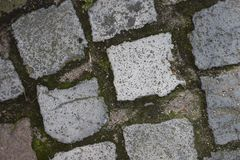 Cobblestone, Wall, Road Surface, Grass royalty free stock images