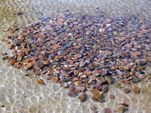 Cobblestone in water. Some cobblestones in the clean water Stock Images