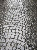 Cobblestone wet Royalty Free Stock Photos