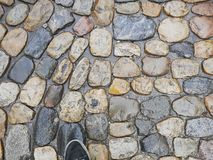 Cobblestone wet Stock Photography
