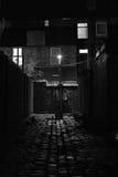 Cobblestoned achtersteeg met straatlantaarn bij nacht royalty-vrije stock fotografie