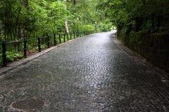 Cobblestoned aleja w lesie Zdjęcie Royalty Free