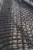 Cobblestoned gata Bruges Royaltyfri Foto