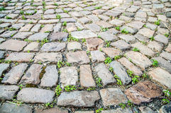 Cobblestoned road Royalty Free Stock Photos
