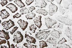 Cobblestones. Old cobblestones covered with snow in winter Stock Images