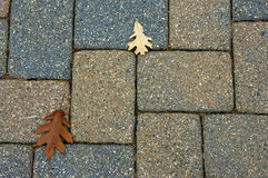 Cobblestones. Cobble Stone bricks with a couple fall leaves Royalty Free Stock Photography