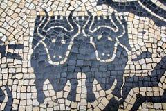 Cobblestones Bulls Stock Images
