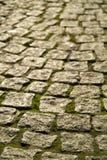 Cobblestones com musgo Imagens de Stock Royalty Free