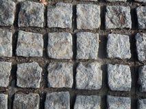 Cobblestones históricos Imagem de Stock