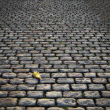 Cobblestones. Old Road with large Cobblestones and a Dead Leaf vector illustration