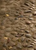Cobblestones velhos Imagem de Stock