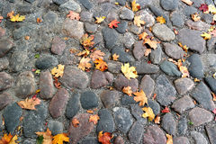 Cobblestones. yellow leaves. Cobblestones. a few yellow leaves. autumn day Royalty Free Stock Photography