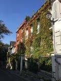 Coberta da videira de uma casa de cidade em Paris Imagens de Stock Royalty Free
